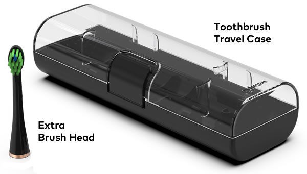 travel case and brush head